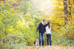 Beautiful young couple with dog on a walk in colorful sunny autumn forest, kissing.