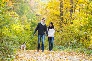 Beautiful young couple with dog on a walk in colorful sunny autumn forest