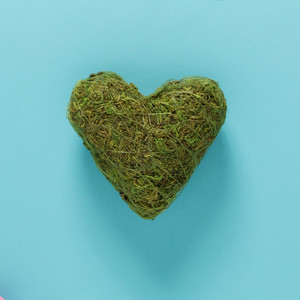 Big green moss heart on vibrant blue background
