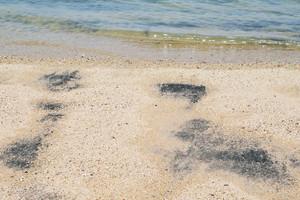 Black sand beach at langkawi , Malaysia