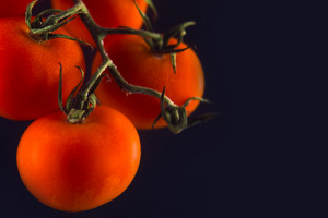 Branch of fresh red tomatoes isolated on the black