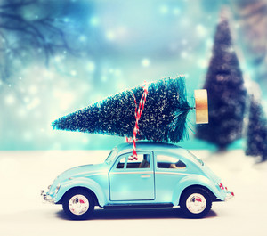 Car carrying a Christmas tree in a snow covered miniature evergreen forest