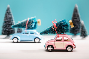 Cars carrying Christmas trees in a snow covered miniature evergreen forest