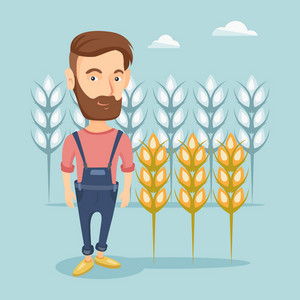 Caucasian farmer with beard standing on the background of wheat field. Smiling farmer working in wheat field. Cheerful farmer checking wheat harvest. Vector flat design illustration. Square layout.