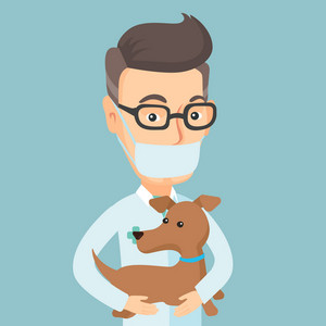 Caucasian veterinarian doctor holding dog. Veterinarian doctor in medical mask carrying a dod. Veterinarian doctor examining dog. Pet care concept. Vector flat design illustration. Square layout.