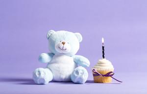 Child celebration theme with a cupcake and stuffed animal