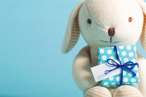 Child celebration theme with present box and stuffed animal