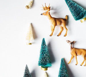 Christmas trees and deer from top view