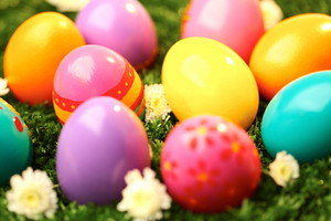 Close-up of colored Easter eggs in green grass