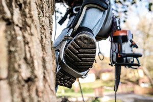 Close up of leg of lumberjack with a chainsaw and harness prepared for pruning a tree. A tree surgeon, arborist climbing a tree in order to reduce and cut his branches.