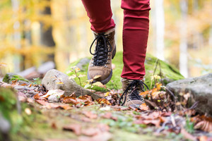 Close up of legs of unrecognizable woman in autumn nature walking from rock covered with green moss. Hiking shoes.