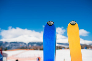 Close up of two pair of skis in winter nature