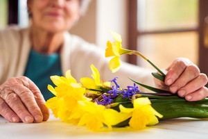 Close up of unrecognizable senior woman sitting by the window and holding bouquet of yellow daffodils