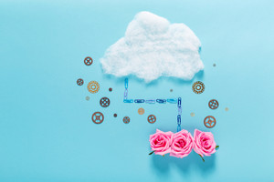 Cloud computing concept with roses or romance theme