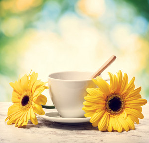 Coffee cup with yellow gerberas over shiny green background
