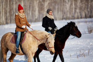 Couple enjoying horse riding in winter day