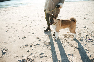 Cropped picture of attractive young lady walks in winter beach with dog on a leash.