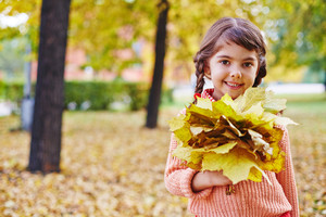 Cute girl with bunch of yellow maple leaves looking at camera