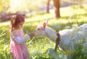 Cute little girl outside on a green meadow on a sunny summer day