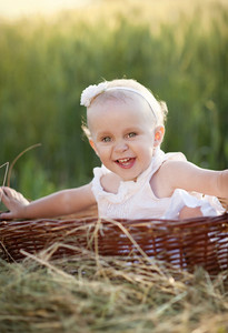Cute little girl sitting in basket in summer nature