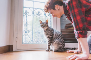Cute scene between a woman and her european cat indoor in her house - owner, love, affection concept
