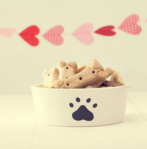 Dog treats on a white bowl with a garland of hearts