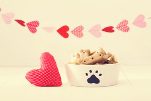 Dog treats on a white bowl with a heart cushion with a garland of hearts