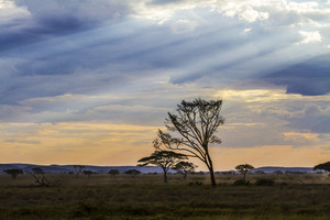 Dramatic african landscape