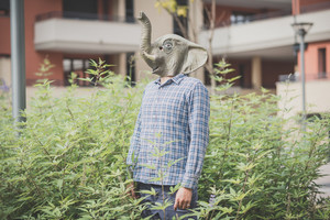 elephant mask absurd man in the plants