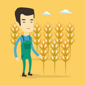 Excited asian farmer standing on the background of wheat field. Smiling young farmer working in wheat field. Cheerful farmer checking wheat harvest. Vector flat design illustration. Square layout.