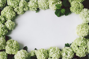 Frame from green flowers with space for text in the middle, top view