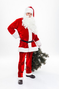 Full length of serious man santa claus standing and holding christmas tree