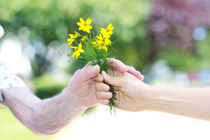 Giving yellow flowers to senior lady outside