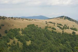 Grand mountains landscape under sky. Donovaly, Slovakia, Europe.
