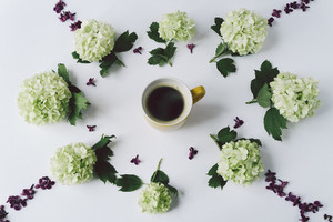 Green flowers and petals of lilac in the form of a circle lying around the yellow Cup with coffee on white background, top view