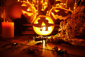 Halloween composition with jack-o-lanterns, spiders, dry herbs and candle