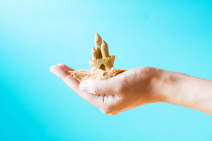 Hand holding a sand castle on a bright blue background