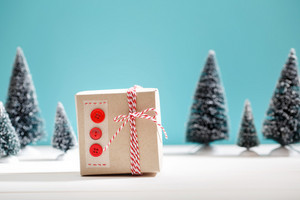Handmade gift box in a snow covered miniature evergreen forest
