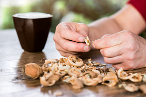Hands of unrecognizable woman cracking walnuts, taking them out of shell, wooden table.