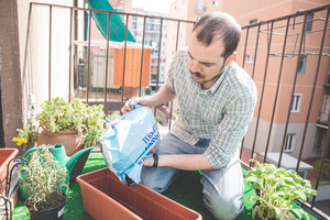handsome stylish man gardening at home