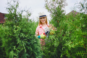Happy female gardener looking at camera while taking care of thuja