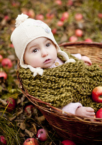 Happy little girl in warm clothes is sitting in basket with apples in autumn nature