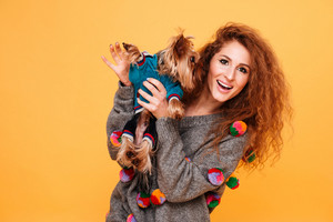 Happy red head woman playing with her yorkshire terrier isolated on orange background