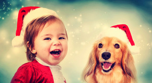 Happy Toddler girl and Dachshund dog with Santa hats smiling