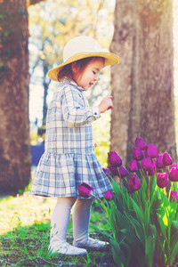 Happy toddler girl in a hat playing with purple tulips outside in spring