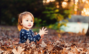Happy toddler girl playing outside in a pile of autumn leaves at sunset