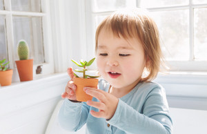 Happy toddler girl playing with little potted plants in her house