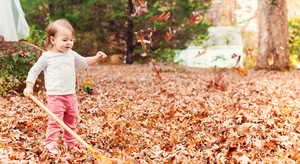 Happy toddler girl raking leaves in autumn