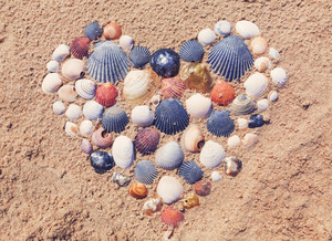 Heart shape made of seashells on the beach