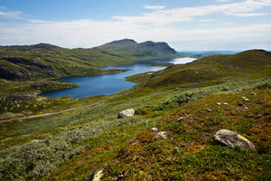 High mountain landscape summertime in Telemark, Norway. 1000 meter above the ocean.